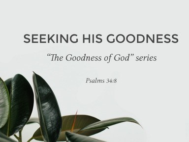 Pt. 3 - SEEKING HIS GOODNESS