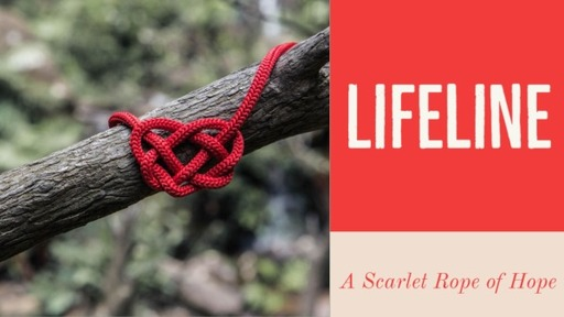 May 24, 2020 am Lifeline Rope of Hope The Scarlet Line For Jonathan
