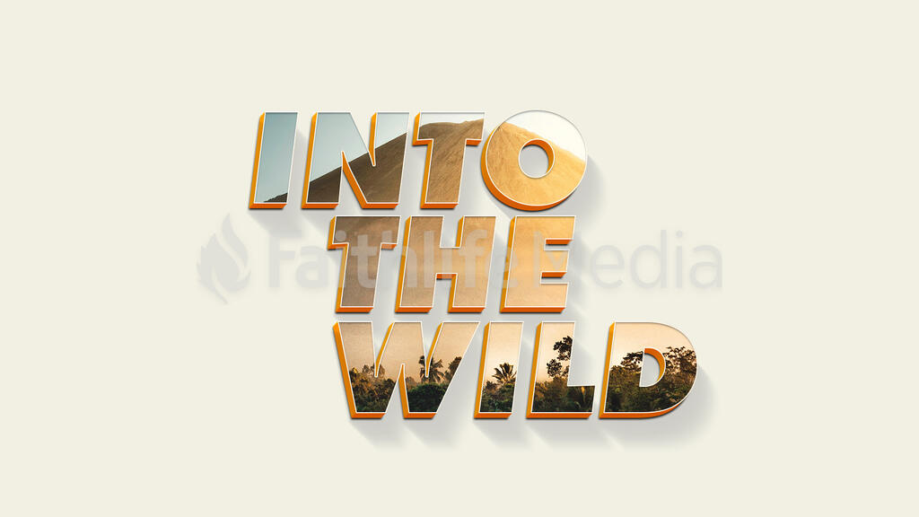 Into The Wild large preview