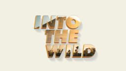 Into The Wild 16x9 7fbfd64d 5b7f 4ec4 a167 b4651cb94aa3  PowerPoint image