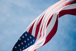 American Flag 49 image