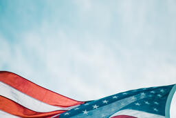 The American Flag  image 1