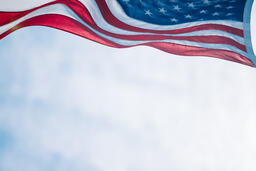 American Flag 29 image