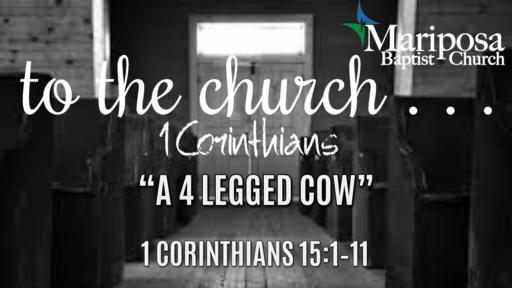 """""""A 4 Legged Cow"""""""