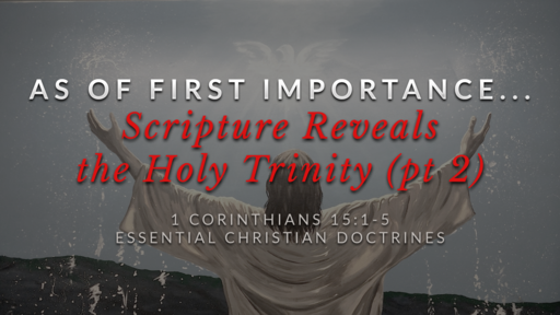 21. Scripture Reveals the Holy Trinity (pt 2)