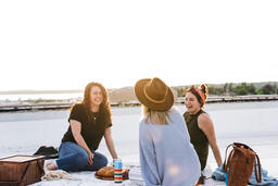 Women Talking and Having a Picnic Together  image 2