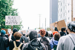 Peaceful Protesters Holding Black Lives Matter Signs  image 1