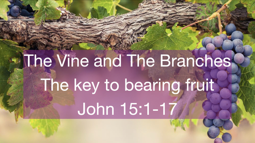 The Vine And The Branches; The key to fruitful living