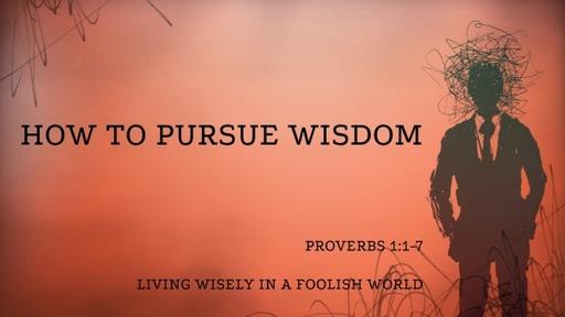 How to Pursue Wisdom