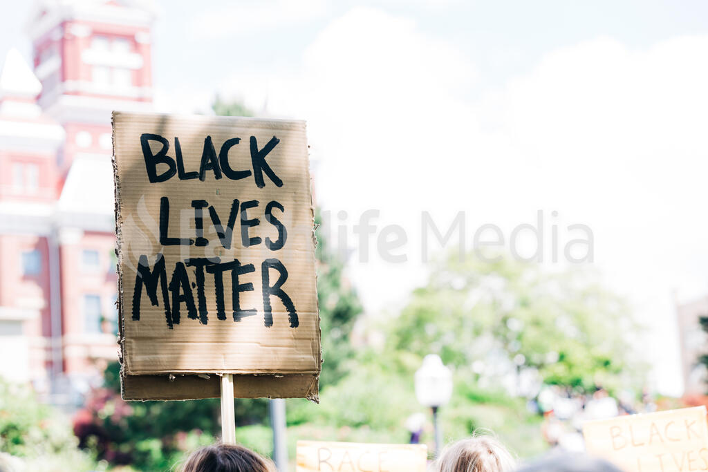 Black Lives Matter Sign at a Rally large preview