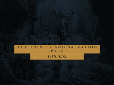 The Trinity and Salvation Pt. 3; 5-24-2020