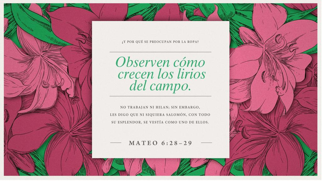 Mateo 6.28–29 large preview