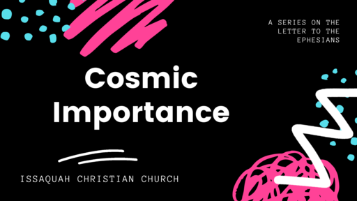 Cosmic Importance