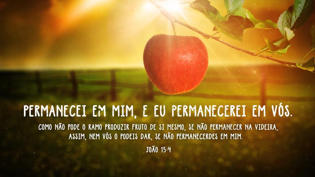 João 15.4 large preview
