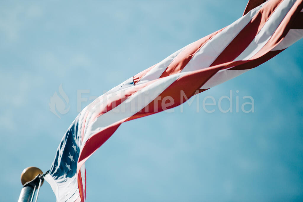 The American Flag large preview