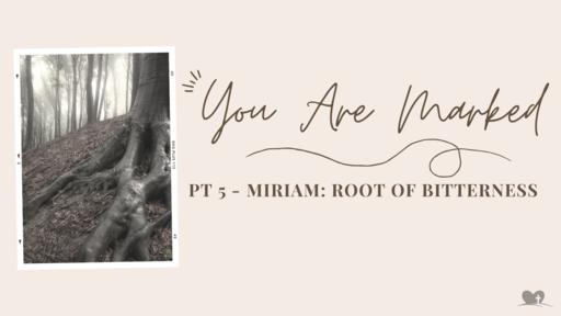Part 6: Miriam - Root of Bitterness