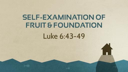 Self-Examination of Fruit & Foundation