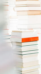 A Stack of Books  image 3
