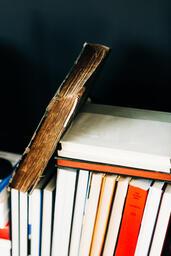 Stacks of Books  image 7