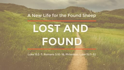 Lost and Found - A New Life for the Found Sheep