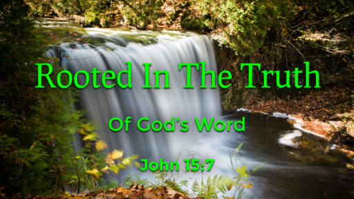 Rooted In The Truth Of God's Word