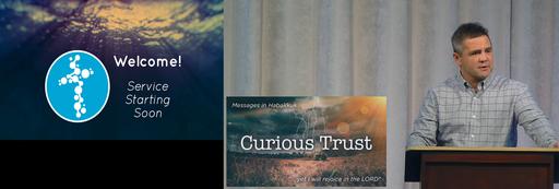 Curious Trust