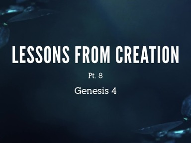 Lessons from Creation Pt. 8