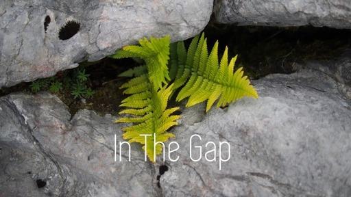 In The Gap!