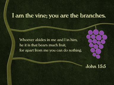 John 15 (Covid 19)