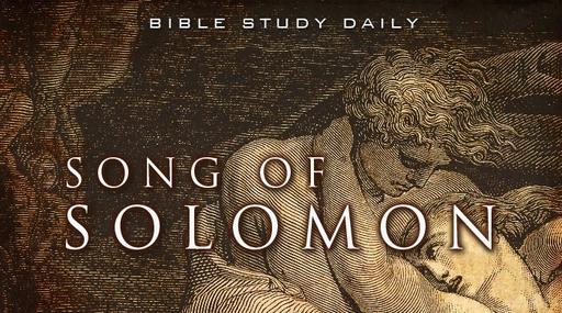Daily Prayer - Thursday 9th July 2020