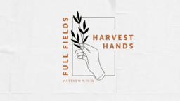Full Fields Harvest Hands  PowerPoint image 1