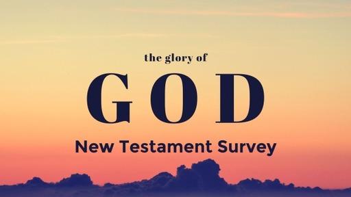 New Testament survey Romans-Revelation