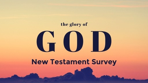 New Testament survey Romans-Revelation