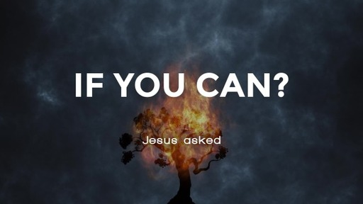 If You Can?