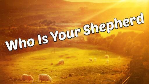 Who Is Your Shepherd