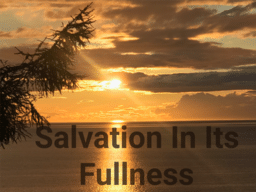 SALVATION IN ITS FULLNESS!  Steve Sorensen  07/26/20