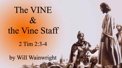 2020-07-04 The VINE & the Vine Staff - Will Wainwright