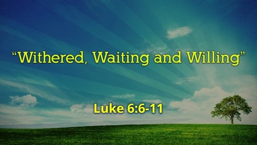 """""""Withered, Waiting and Willing"""""""