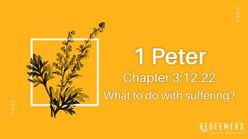 1 Peter 3:12-22 • What to do with suffering?