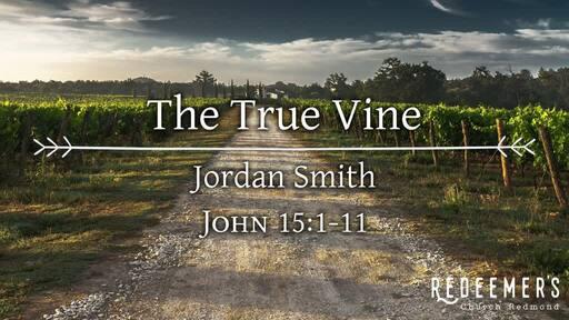 John 15:1-11 • The True Vine