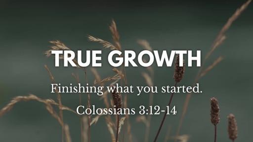 Colossians 3:12-14 / True Growth