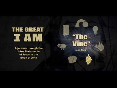 The Great I Am-- I am the True Vine