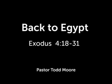 Back to Egypt