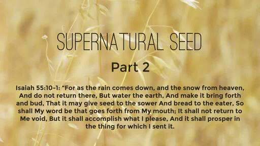 Supernatural seed (Part 2)