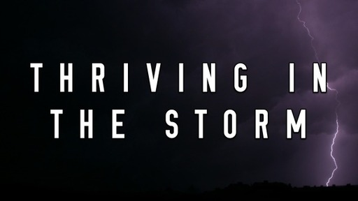 Thriving in the Storm (August 9, 2020)
