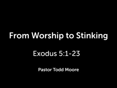 From Worship to Stinking