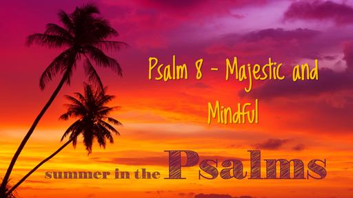Psalm 8 Sermon