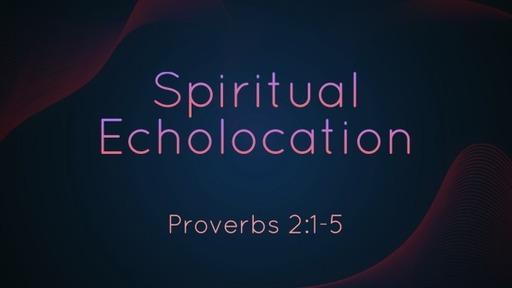 590 - Spiritual Echolocation