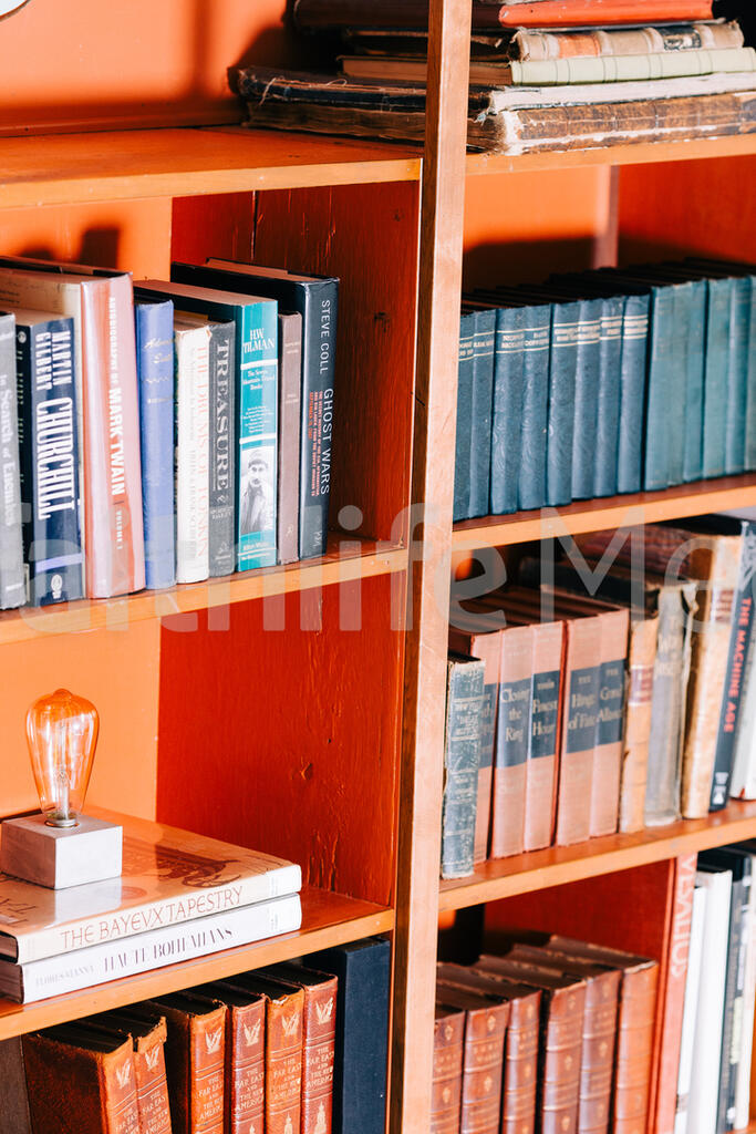 A Book Shelf Full of Books large preview