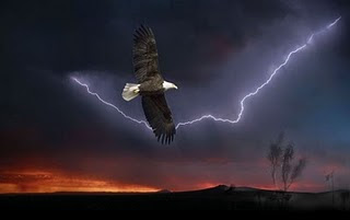 """Join us Sunday August 16, 2020 at 9:00 am - """"THE EAGLE IN ME"""" - ISAIAH 40:31"""